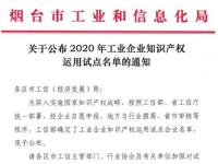 引领产业创新与行标制定,金天国际核心制造企业入选工信部2020年工业企业知识产权运用试点名