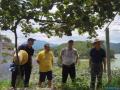 安发生物探索更优更全模式打造特色高效新农业助推乡村振兴